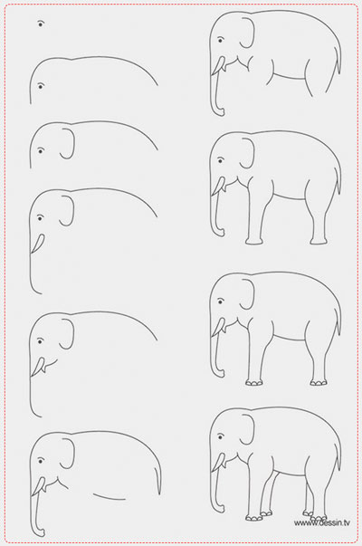 easy drawing ideas for kids easy draw elephant kolay çizim fil resmi horoz draw step by step