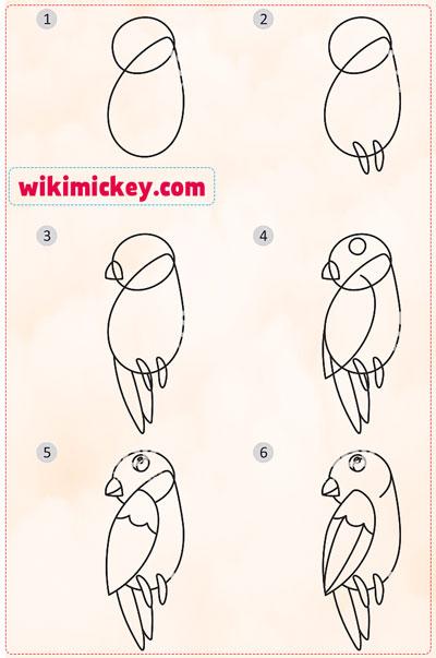 easy drawing ideas for kids easy draw parrot kolay çizim papağan resmi draw step by step