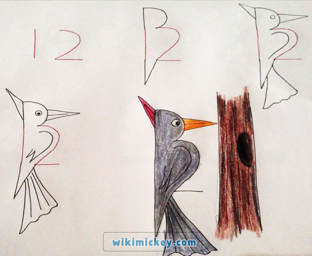 easy drawing ideas for kids easy draw wood pecker kolay çizim ağaçkakan