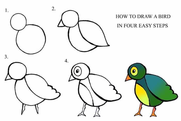 easy drawing ideas for kids easy draw bird kolay çizim kuş resmi draw step by step-