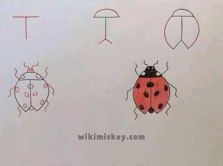 easy drawing ideas for kids easy draw ladybug kolay çizim uğurböceği