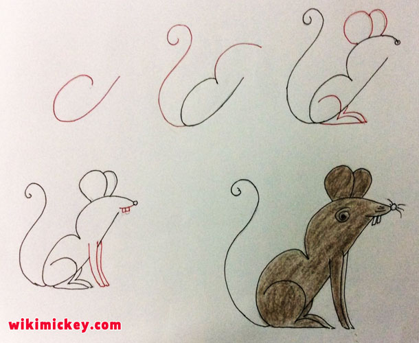 easy drawing ideas for kids easy draw mouse rat mice kolay çizim fare souris