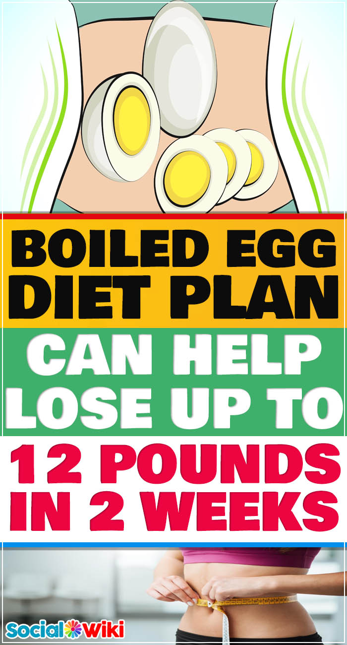 Boiled egg diet plan can help lose up to 12 pounds in 2 weeks 6