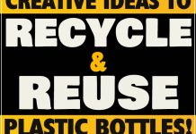 Creative Ideas to Recycle and Reuse Plastic Bottles! 1