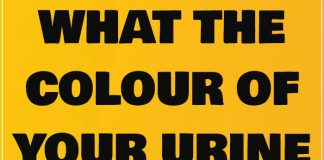 What the colour of your urine can say about your health 2