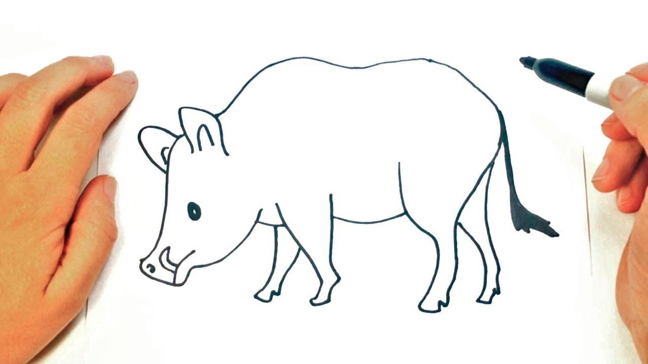 Cómo Dibujar Un Jabali Paso A Paso Dibujo Fácil De Jabali Social Useful Stuff Handy Tips